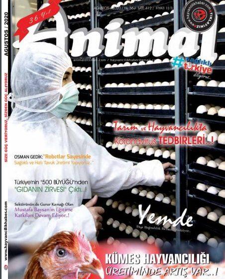 Ağustos 2020 Dergi