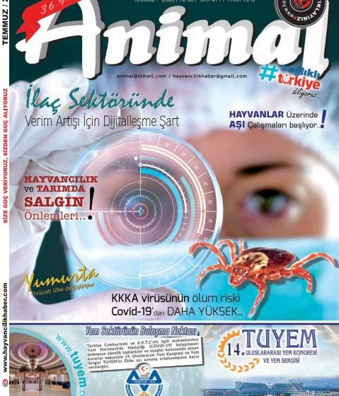 Temmuz 2020 Dergi
